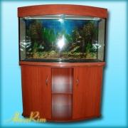 Продается панорамный аквариум 250л + крышка (30 ВТ + 30 ВТ,  Т-8) + тумба.